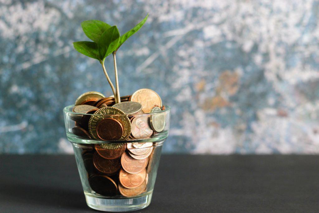 Eine Pflanze wächst in einem Glas, das mit Münzen statt mit Erder gefüllt ist.